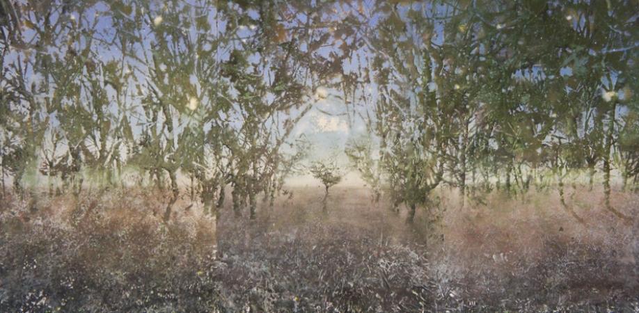 http://katarinaaxelsson.com/files/gimgs/th-32_triptych Katarina Axelsson_v2.jpg