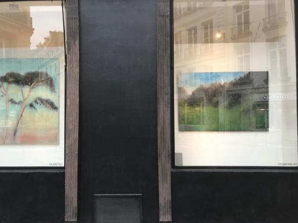 http://katarinaaxelsson.com/files/gimgs/th-44_vitrine gallerie felli axelsson.jpg