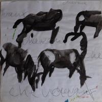 http://katarinaaxelsson.com/files/gimgs/th-15_horses-katarina-axelsson.jpg